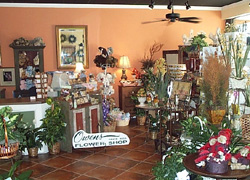 We offer a large variety of flowers plants and gifts
